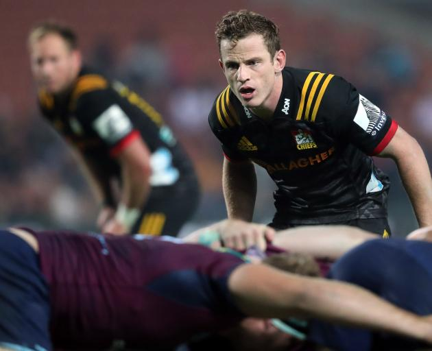 A string of impressive performances has put Chiefs halfback Brad Weber in the frame for a...
