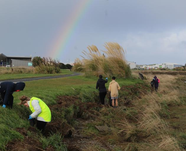 The rainy weather didn't deter volunteers from collecting rubbish along the Waihopai River banks...
