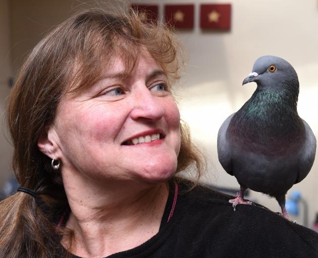 Macandrew Bay woman Shelley Davies with her pet pigeon. Photo: Gregor Richardson