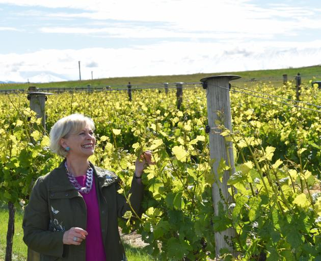 Ata Mara co-owner Janiene Bayliss was delighted when the vineyard's 2015 pinot noir won a gold medal in the 2019 Decanter World Wine Awards. Photo: SRL Files