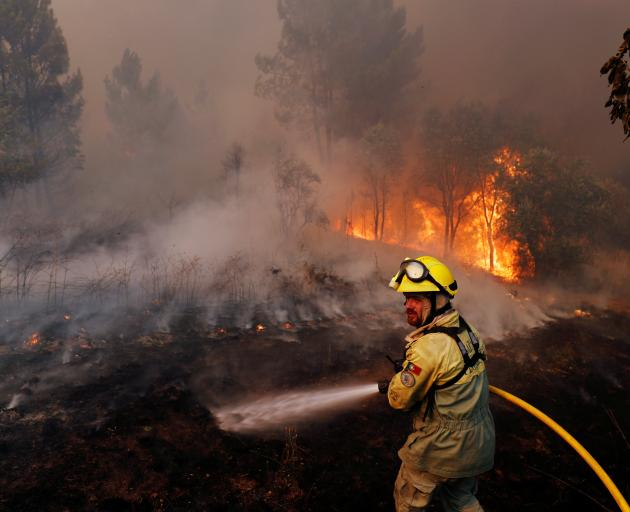 Firefighters help to put out a forest fire near the village of Vila de Rei. Photo: Reuters