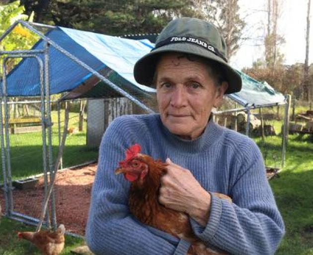 Minni Gordon of Haruru with Joey and other surviving chickens after a series of dog attacks. Photo: NZME.