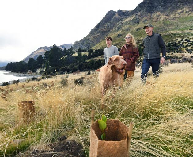 Finn, Justine and Geoff Ross, with Sika the dog, check native plantings on Lake Hawea Station....