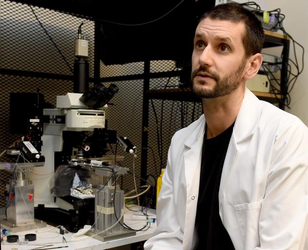 Dr Karl Iremonger at his University of Otago laboratory. Photo: Gregor Richardson