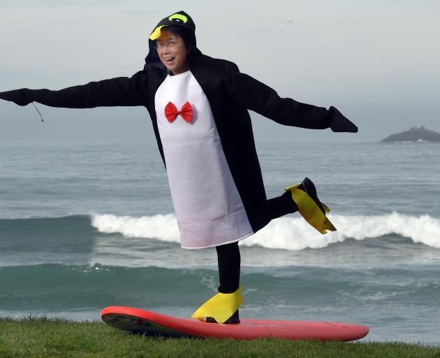 Dunedin lawyer Teresa Chan catches some publicity with a penguin surfing stunt at St Clair Beach...