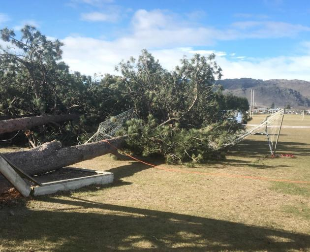 Dunstan High School's high ropes course lies destroyed after trees on which the course was built...