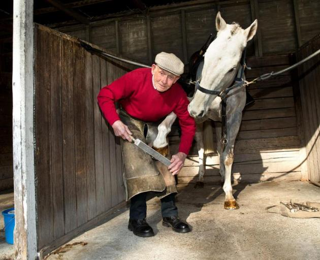 85-year-old farrier Brian Wilson is plying his trade as the plating inspector at Riccarton on race-days. Photo: Martin Hunter