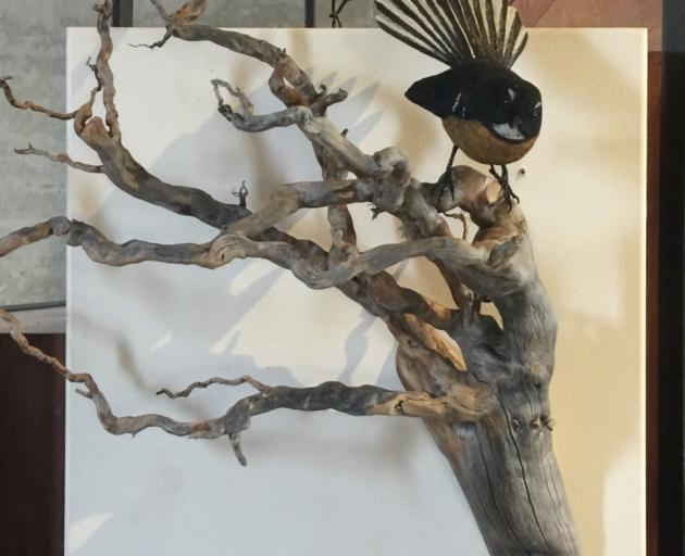 Fantail, by Luke Anthony