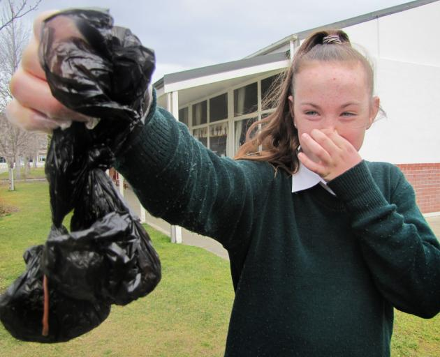 St Gerard's School council leader Hannah O'Connor (13) holds up a couple of the bags of dog faeces that have been dumped on the school grounds over recent days. Photo: Alexia Johnston