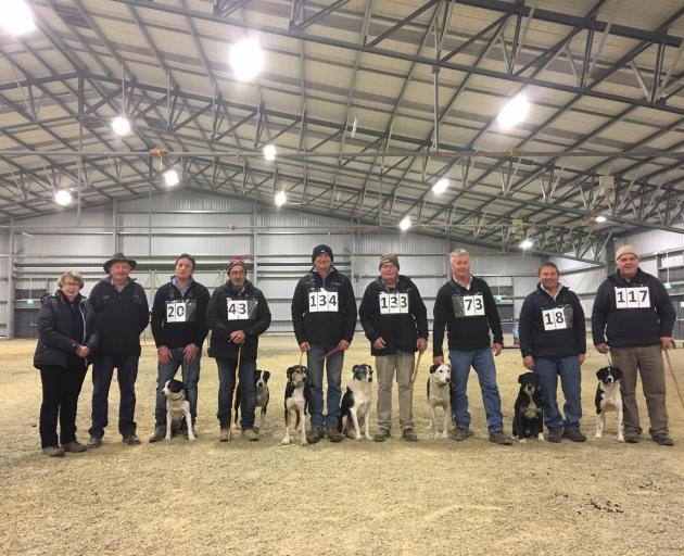 Delighted with their success at this year's annual Southern Indoor Charity Dog Trial, which took place at the Southern Field Days site at Waimumu last week, are the top seven finalists (from left) clerk Francis King and judge Merv King, of Pleasant Point,