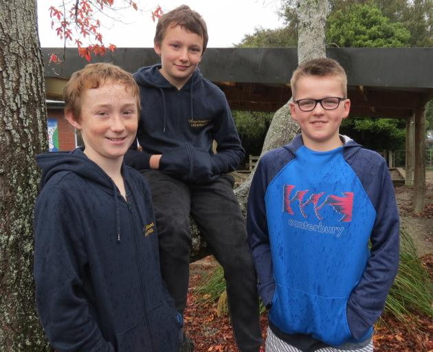 After their adventures at the AgrikidsNZ competition in Napier recently, the Limehills School's Underdogs are back working on the school's glebe or on community projects. From left are Cooper Mitchell (11), Danny McDonald (11) and Ben Cairns (10). Photo: