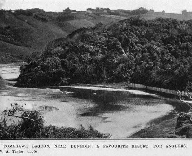 Tomahawk Lagoon, near Dunedin, a favourite resort for anglers. — Otago Witness, 29.8.1919.  ...