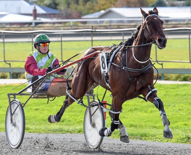 U May Cullect and driver Kirstin Barclay drew rapturous applause from the Ascot Park crowd on...