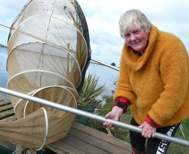 Clutha Mouth whitebaiter Christine Melvin, of Balclutha, says low flows, as at present, can affect yields. Photo: Richard Davison
