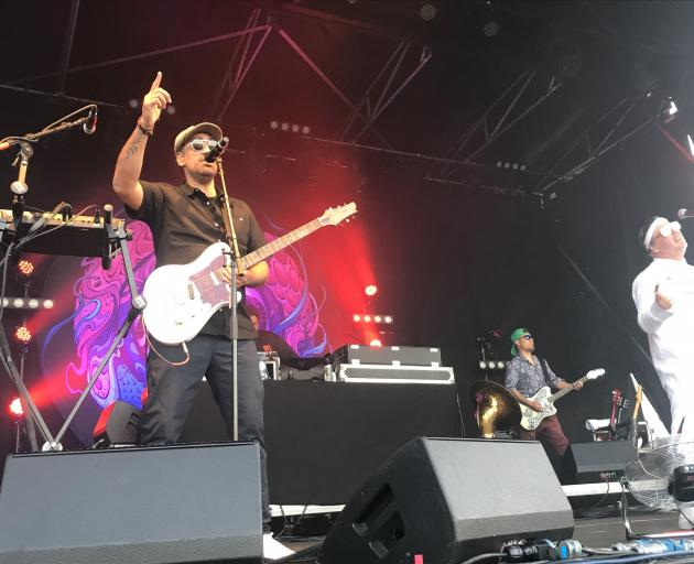 Fat Freddy's Drop played at Queenstown's John Davies Oval in January this year. PHOTO: Daisy Hudson