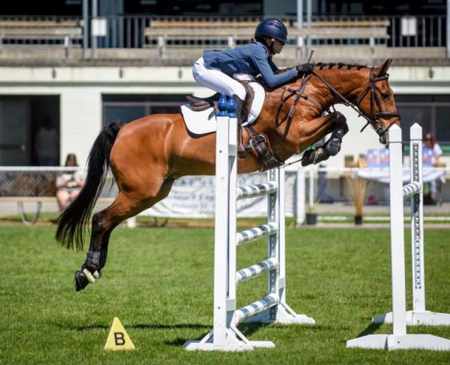 Darfield High School show jumper Georgia Allison will compete in Morocco and Sydney over the next...