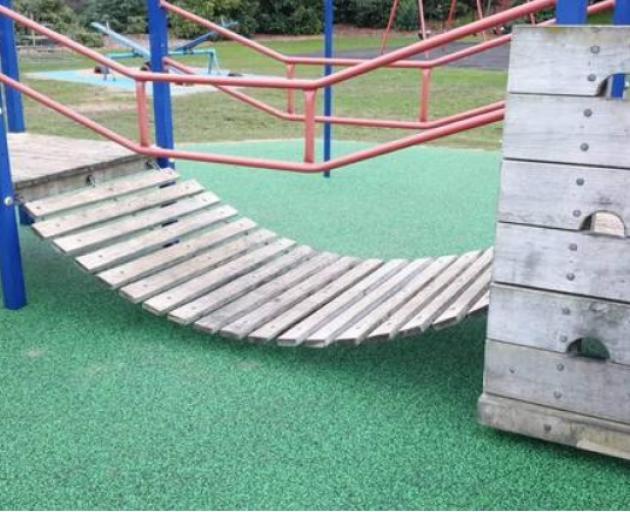 Overly safe' Dunedin playground slammed | Otago Daily Times