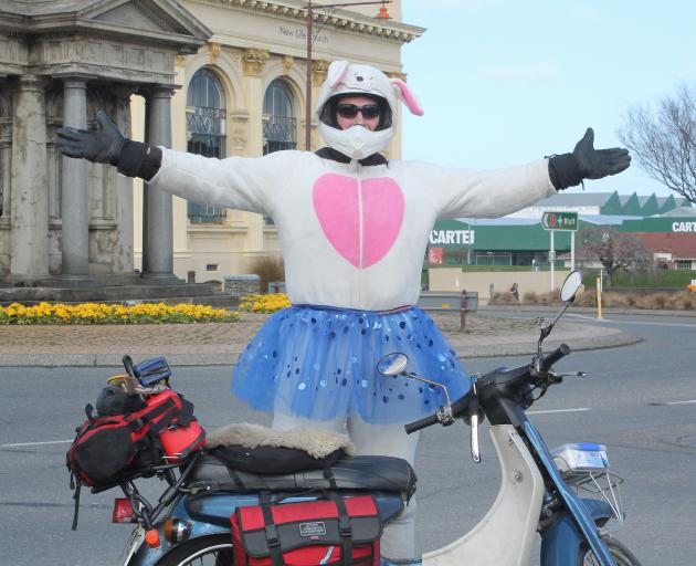 Famous travelling rabbit Harvey Throttlestop made it from Christchurch to Invercargill yesterday...