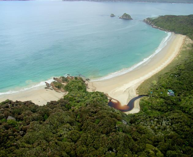 Sealers Bay, also known as Waikoropupu, is the main landing place on Whenua Hou, whether by sea...