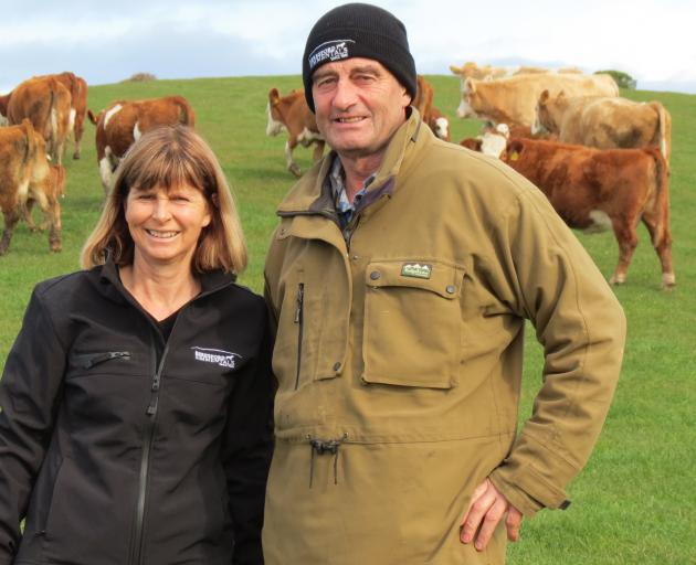Steph and Warren Burgess, of Beresford Simmental Stud, Puketiro, run both Simmentals and Murray Grey cows, as well as Turanganui Romney ewes. Photo: Yvonne O'Hara