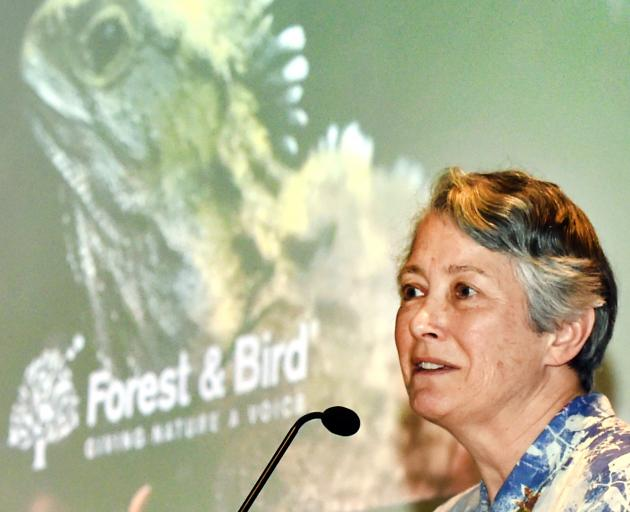 Alison Cree considers the future of Otago's lizards yesterday. Photo: Peter McIntosh