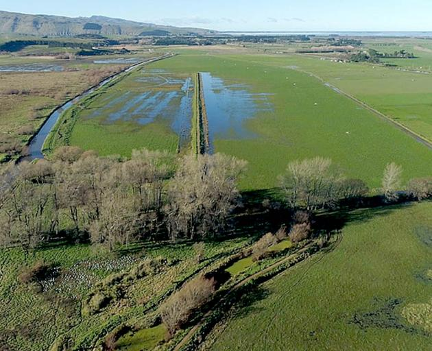 More than 100,000 plants will be planted at the newly constructed Ahuriri Lagoon wetland near Tai...