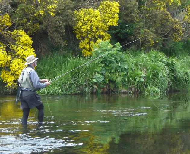 Otago Daily Times angling columnist Mike Weddell on the Waipahi River. Photo: Supplied