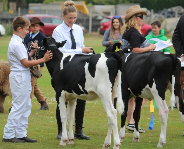 All Breeds Dairy Handler competitors Ashley Wendelgelst and Chloe Thomson chat during the calf class line up at Tokomairiro A&P Show in December, 2017. Photo: Katy Button