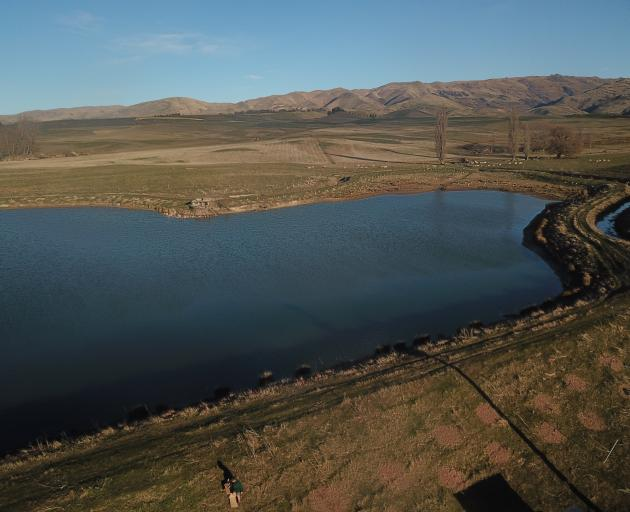 The Weir family fenced off their first irrigation dam and planted 1300 mixed native species. Photos: Alice Scott
