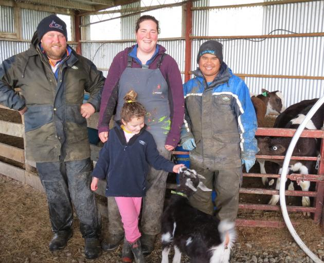 Calving is in full swing. Balfour 50/50 sharemilkers (from left) Nick and Anieka Templer, with daughter Maycie (5), and staff member Emman Orendain are kept busy with this year's crop of calves. Photos: Yvonne O'Hara