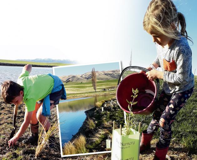 Eddie Weir, left, (8) gets stuck in digging holes for riparian planting. Marley Weir (7) helps plant one of the,many natives that went into the Weir family's first riparian planting project on an irrigation damn in Waipiata. Photo: Alice Scott