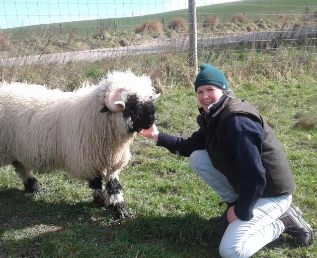 Charlotte Brock and her Valais Blacknose sheep. Photos: Supplied