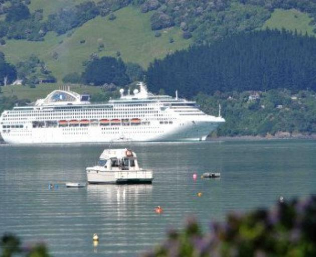 A report has found further research is needed to investigate whether cruise ship propellers and anchors are causing environmental harm to Akaroa Harbour.