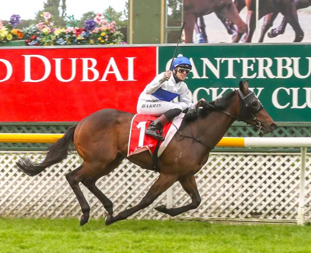 Star 3yr-old Catalyst wins the group 1 Two Thousand Guineas at Riccarton on Saturday for rider...
