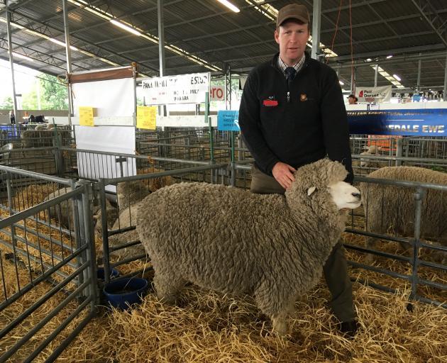 Waipara farmer James Hoban enjoyed a successful show, including winning champion Corriedale ewe. Photo: David Hill
