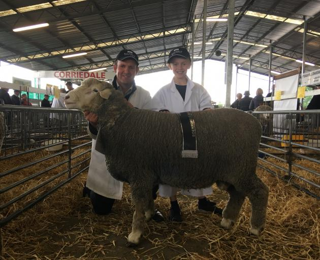 Andrew Sidey, of Hawarden, and his son Harry (9) were thrilled to win a golden ribbon for the premier Corriedale ram hogget, picking up 1st, 2nd, 4th and 5th in the class of 20.