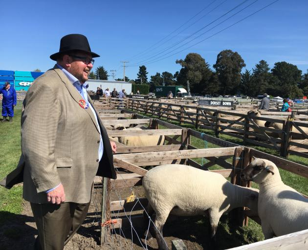 Waimakariri Mayor Dan Gordon tries his hand at sheep judging during his first official public...