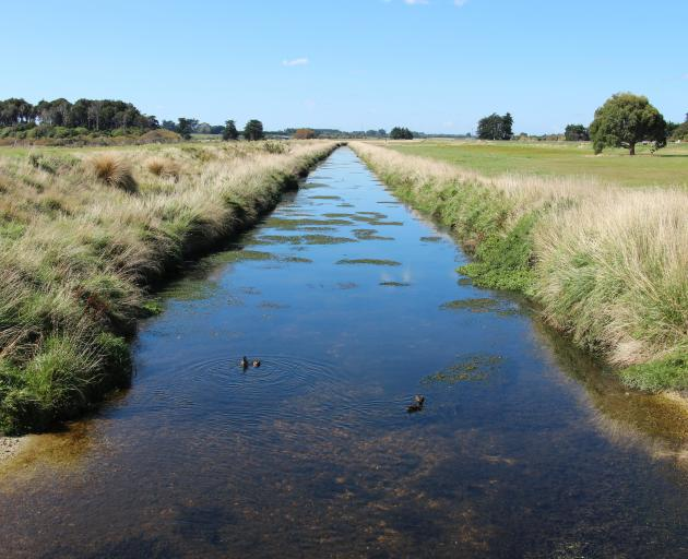Southland's Waihopai River, near Invercargill, has been named  most improved river in the 2019 NZ...