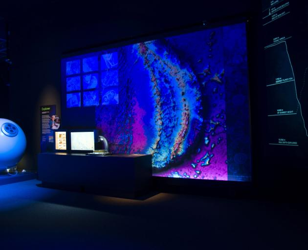 The deep brought to the surface at Otago Museum. Photos: Otago Museum