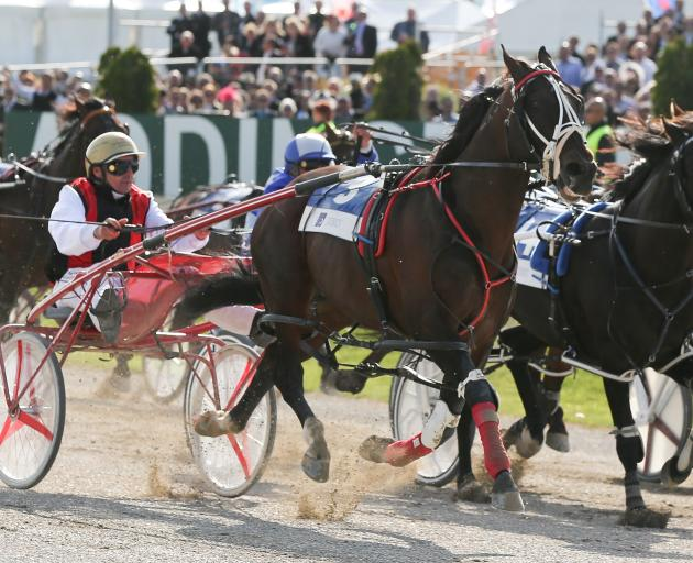 Ricky May drives Terror To Love #3 to win the NZ Trotting Cup during the NZ Trotting Cup at...