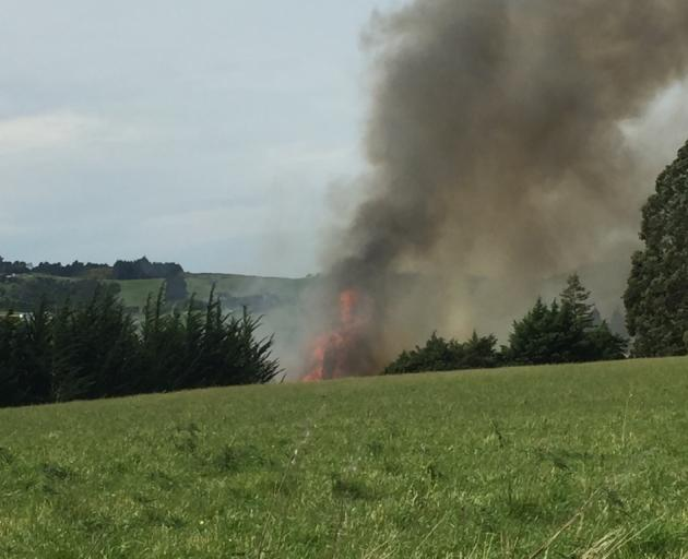 Firefighters are battling a significant blaze near Brighton. Photo: Gregor Richardson