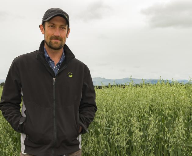Plant and Food Research scientist Dr Brendon Malcolm, pictured in a field of oats, is one of a...
