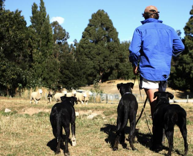 Mr Railton says switching off the phone and enjoying real life is important. Photos: Supplied
