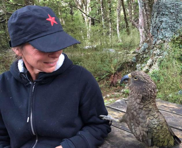 Kea Conservation Trust co-founder and chairwoman Tamsin Orr-Walker comes face to face with a kea...