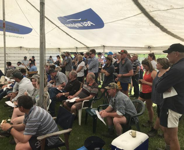 Some of the crowd at Meadowslea's ram sale in South Canterbury. Photo: Supplied