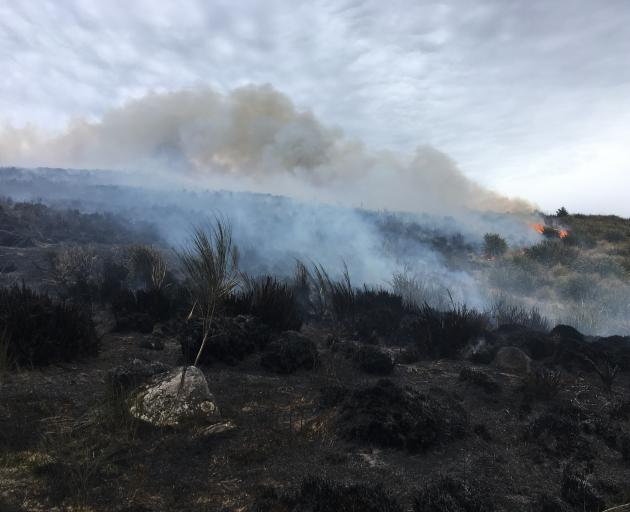 Tussock burns on the Pineapple Track earlier today. Photo: Gerard O'Brien