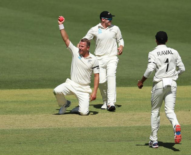 Neil Wagner of New Zealand celebrates after taking a catch off his own bowling to dismiss David Warner of Australia during day one of the First Test match between Australia and New Zealand. Photo: Getty Images