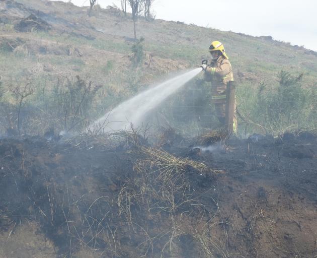 A firefighter battles an out-of-control burn-off in Beach Rd in Oamaru yesterday. Photo: Daniel Birchfield