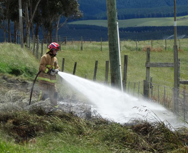 A firefighter tackles a grass fire in Island Stream Rd at Maheno yesterday. PHOTO: DANIEL BIRCHFIELD