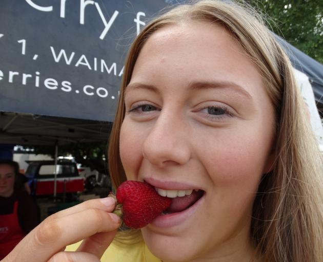 Brooke Tindall (16) of Waimate, samples a strawberry at Strawberry Fare in Waimate on Saturday....